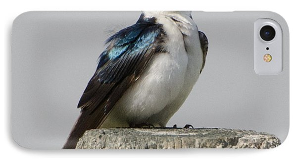 Bird On Post IPhone Case