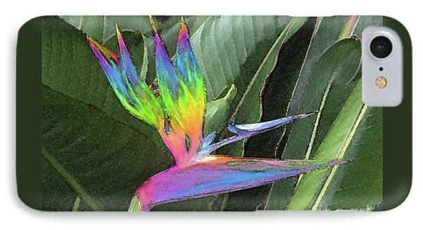 Bird Ow  Paradise IPhone Case by Suzette Kallen