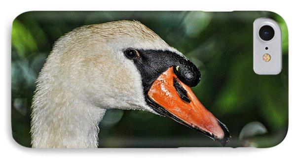 Bird - Swan - Mute Swan Close Up Phone Case by Paul Ward