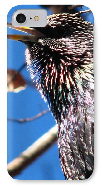 Bird Talk IPhone Case by Cleaster Cotton