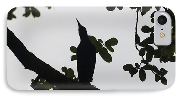 Bird - Grackle Twilight Moment - Luther Fine Art IPhone Case by Luther Fine Art