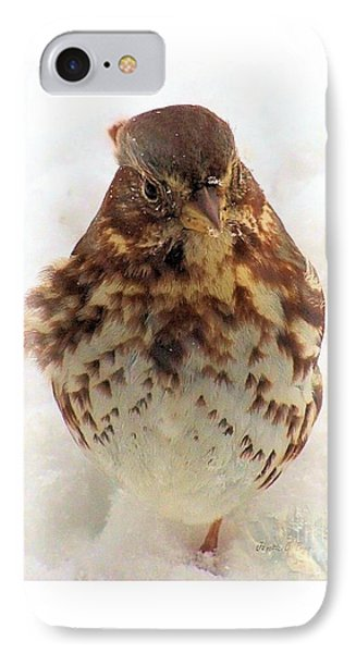 IPhone Case featuring the photograph Fox Sparrow In Snow by Janette Boyd