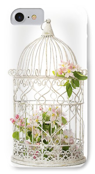 Birdcage Of Spring Blossom IPhone Case by Amanda Elwell