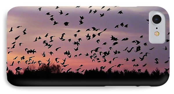 Birds At Sunrise IPhone Case by Aimee L Maher Photography and Art Visit ALMGallerydotcom