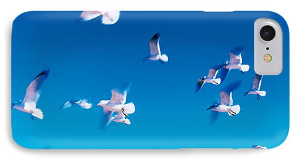 Birds In Flight Flagler Beach Fl Usa IPhone Case