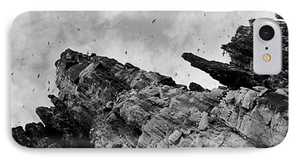Birds Nesting In Cliffs, Norway IPhone Case by Panoramic Images