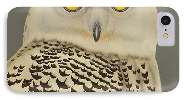 IPhone Case featuring the painting Birds Of A Feather by Darren Robinson
