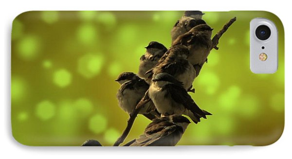 Birds Of A Feather IPhone Case by David Dehner