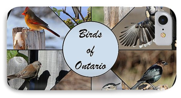 Birds Of Ontario IPhone Case by Davandra Cribbie