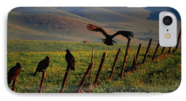 Birds On A Fence IPhone Case by Matt Harang