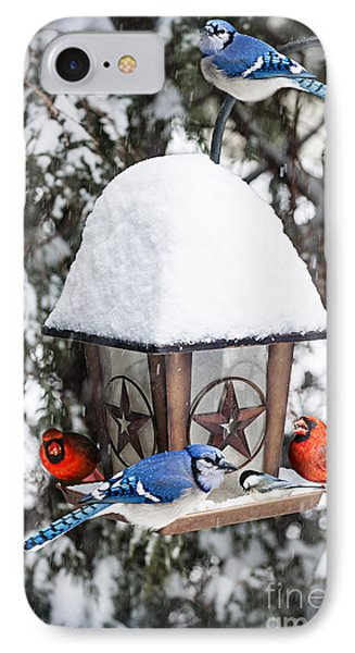 Birds On Bird Feeder In Winter IPhone Case by Elena Elisseeva