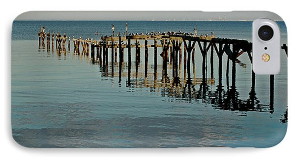 Birds On Old Dock On The Bay Phone Case by Michael Thomas