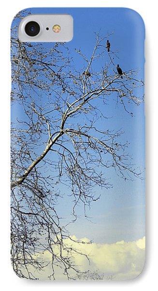 Birds On Tree IPhone Case by Ben and Raisa Gertsberg