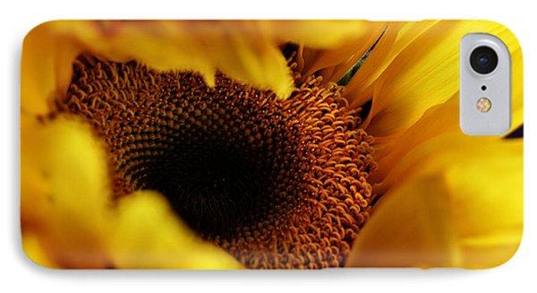 Birth Of A Sunflower Phone Case by Stephanie Frey
