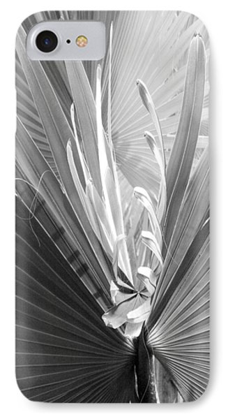 Bismark Palm IPhone Case