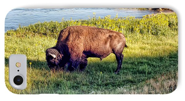 IPhone Case featuring the photograph Bison 4 by Dawn Eshelman