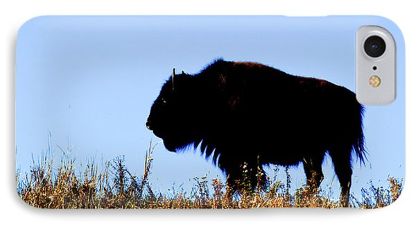 Bison Bull In Silhouette In Lamar IPhone Case by Richard Wright