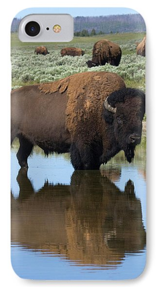 Bison Bull Reflecting IPhone Case by Ken Archer
