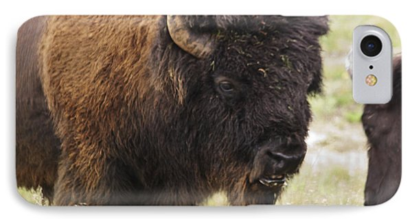 IPhone Case featuring the photograph Bison From Yellowstone by Belinda Greb
