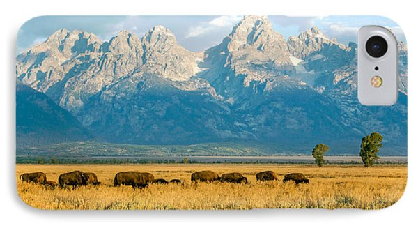 Bison Herd IPhone Case
