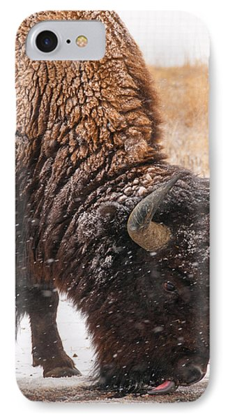 IPhone Case featuring the photograph Bison In Snow_1 by Tom Potter