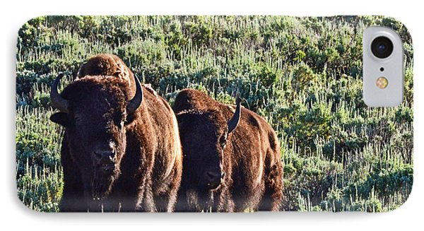 Bison Morning IPhone Case
