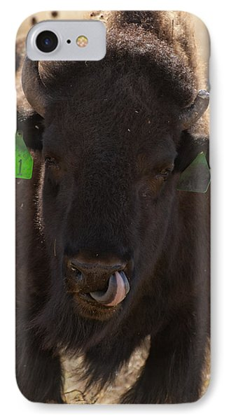 Bison One Horn Tongue In Nose Phone Case by Melany Sarafis
