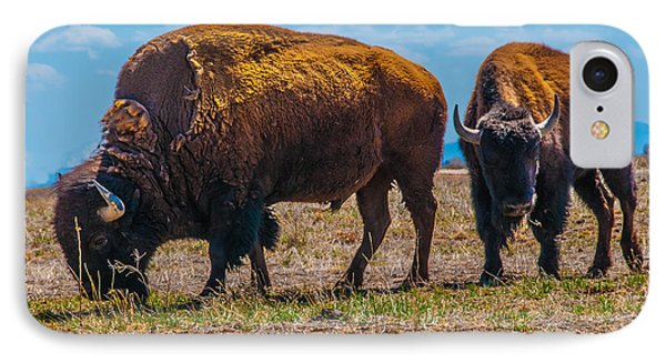 IPhone Case featuring the photograph Bison Pair_1 by Tom Potter