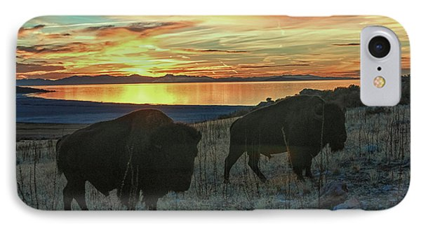 Bison Sunset IPhone Case