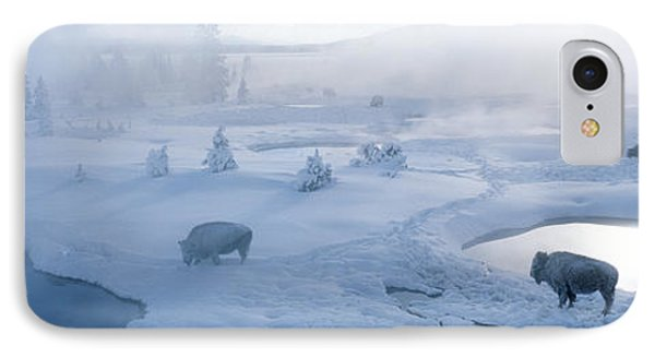 Bison West Thumb Geyser Basin IPhone Case by Panoramic Images