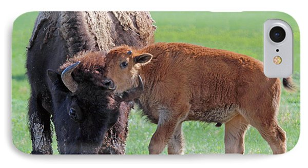 IPhone Case featuring the photograph Bison With Young Calf by Bill Gabbert