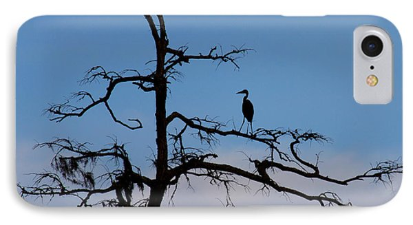 IPhone Case featuring the photograph Black And Blue  by Alan Raasch