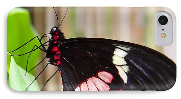 Black And Red Cattleheart Butterfly IPhone Case by Amy McDaniel