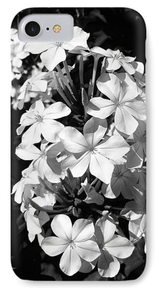 IPhone Case featuring the photograph Black And White Beauty by Alohi Fujimoto