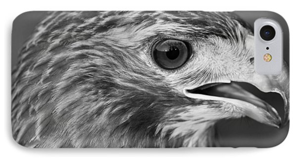 Black And White Hawk Portrait IPhone 7 Case by Dan Sproul