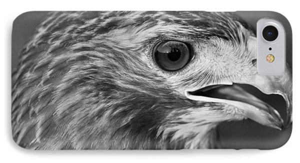 Black And White Hawk Portrait IPhone Case by Dan Sproul