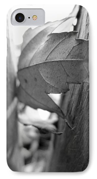 Black And White Leaf At Fort Watauga IPhone Case