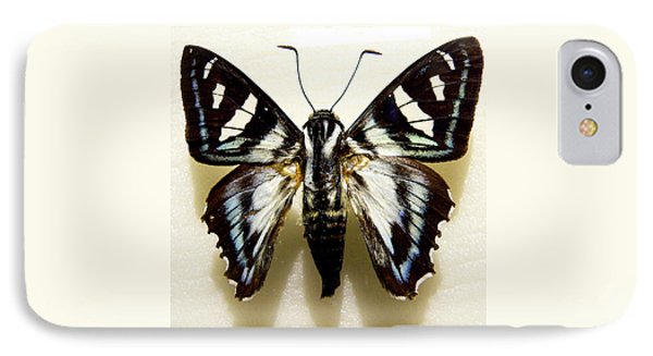 Black And White Moth Phone Case by Rosalie Scanlon