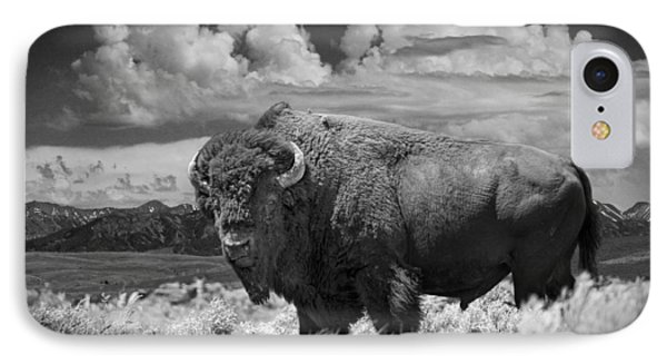 Black And White Photograph Of An American Buffalo IPhone Case by Randall Nyhof