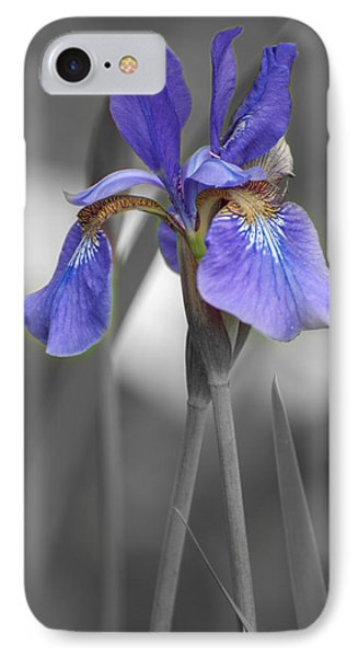 Black And White Purple Iris IPhone Case by Brenda Jacobs