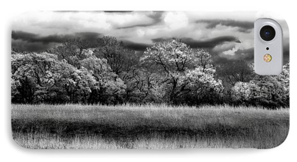 Black And White Trees IPhone Case by Darryl Dalton