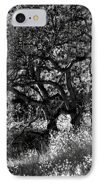Black And White Trees IPhone Case by Deprise Brescia