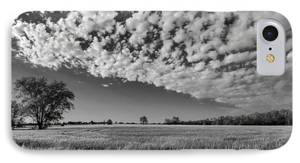 Black And White Wheat Field IPhone Case