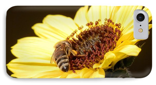Black And Yellow Bee Beauty IPhone Case by Belinda Lee