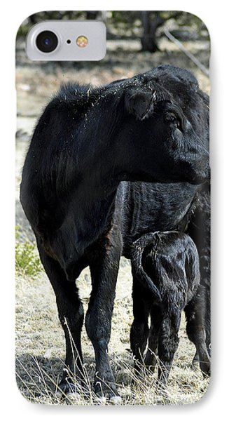 Black Angus IPhone Case