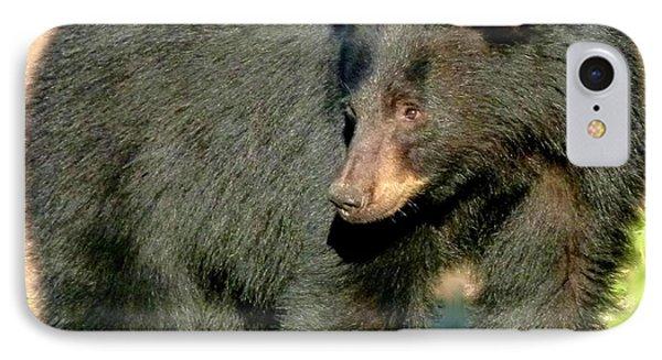 Black Bear 3 Phone Case by Will Borden