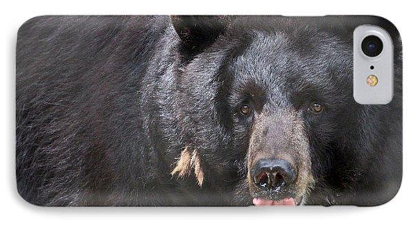 Black Bear Phone Case by Meg Rousher