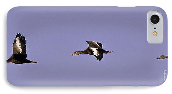 Black Bellied Whistling Ducks In Flight IPhone Case by Anne Rodkin