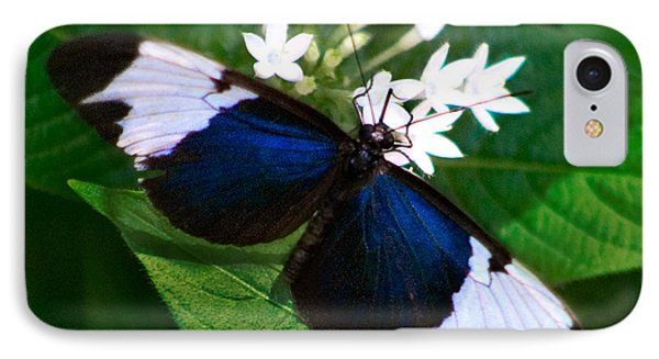 Black Blue And White IPhone Case by Karen Stephenson