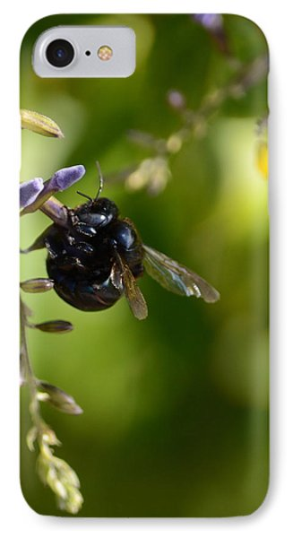 Black Bumblebee IPhone Case by Debra Martz